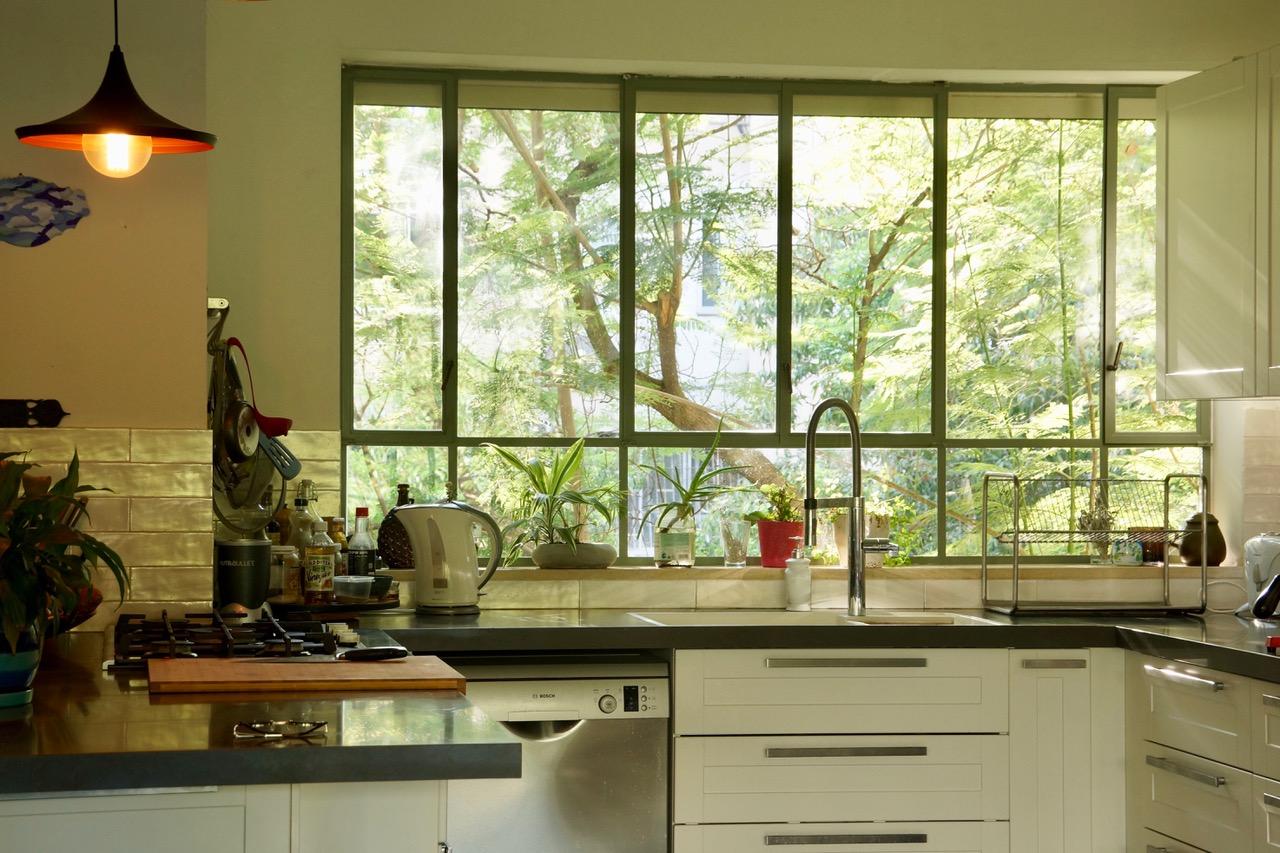 חלון המטבח שמכניס הביתה אור רב וכן את צמרות העצים - מקרוב