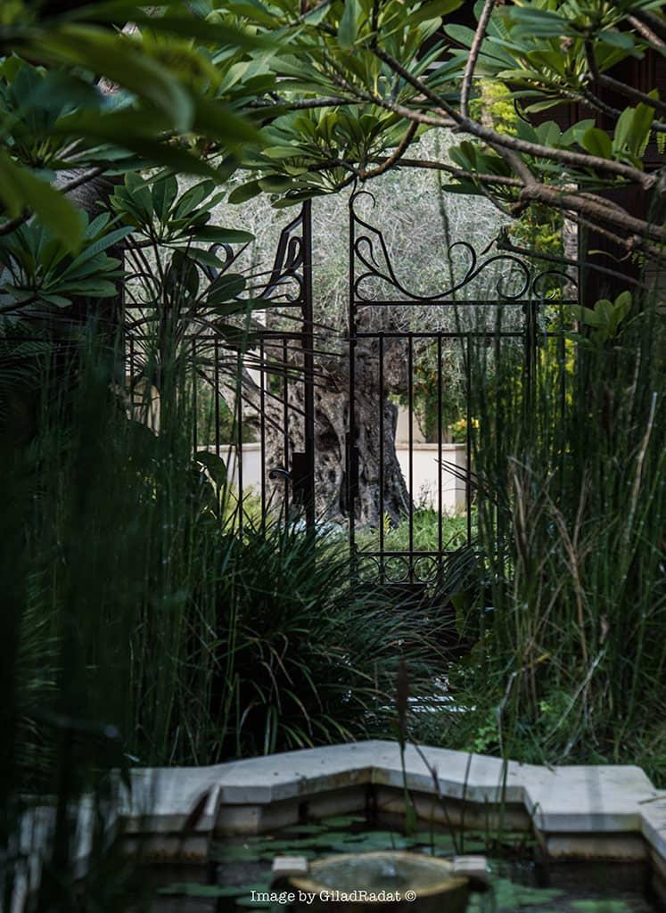 שער לגן עדן - טוסקנה בכפר שמריהו