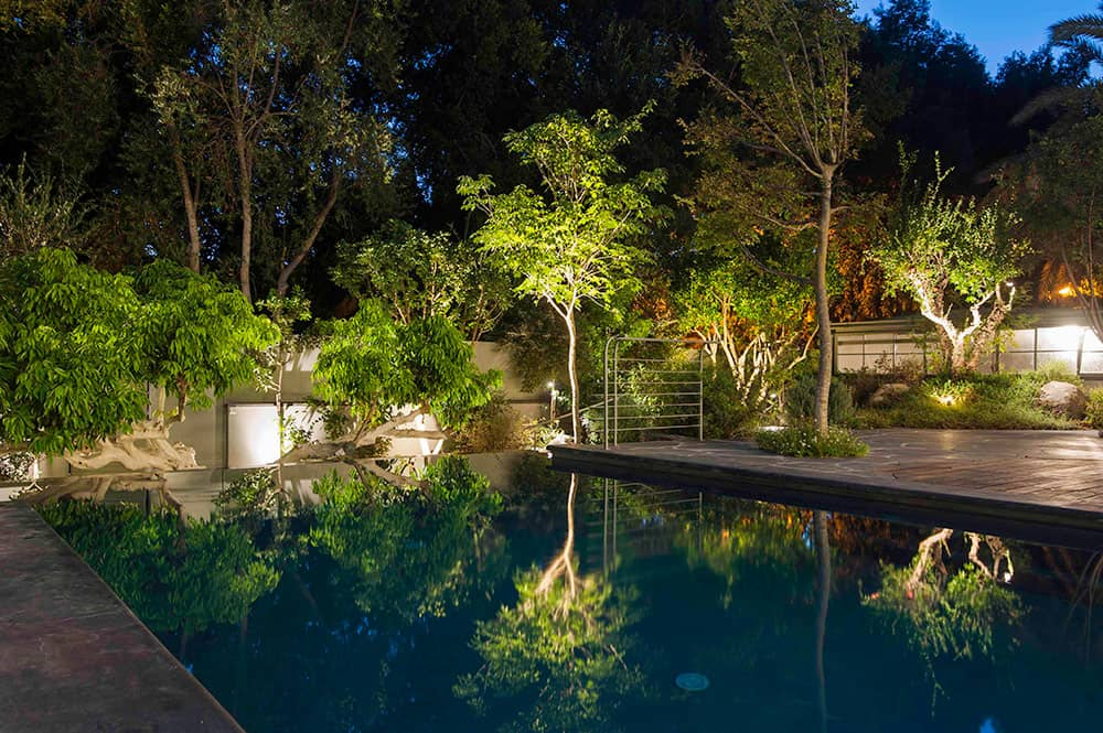 הגינה הקסומה בלילה - ארטפרו בית בסביון
